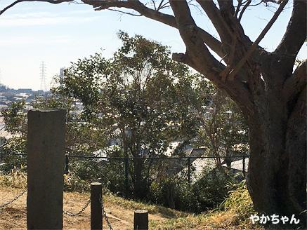 弘法の松公園10やかちゃんさん