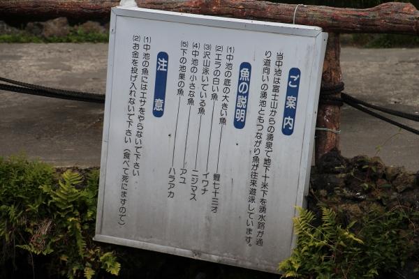 18忍野八海19