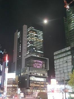 shibuya-street177.jpg