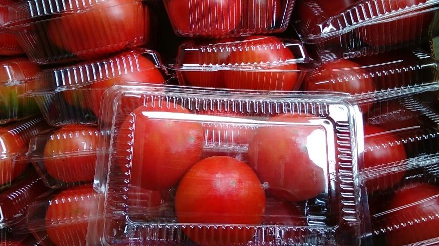 0519トマト