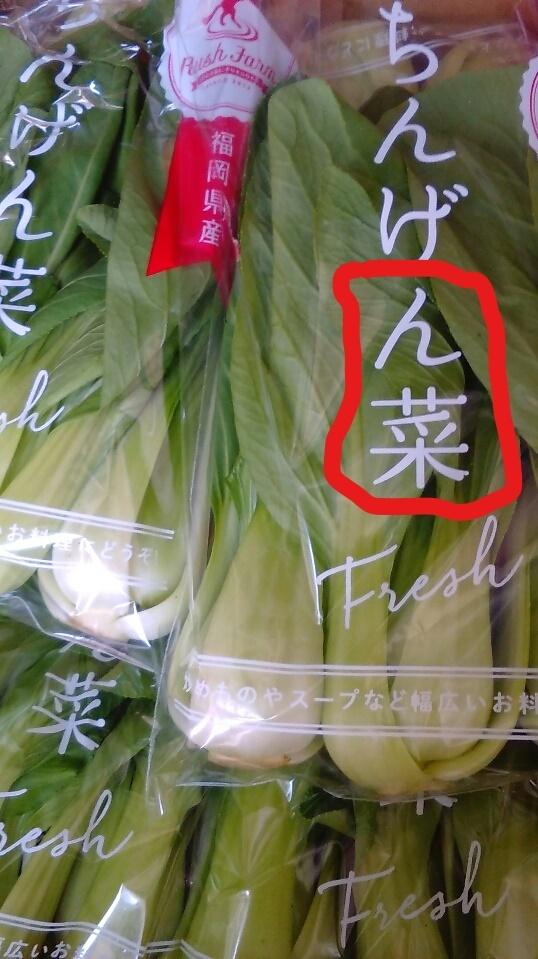 0526青梗菜