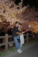 BL180331打上桜ライトアップ5IMG_2166