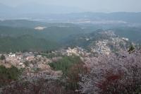 BL180402吉野山2-7IMG_0696