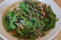 BL180415山菜料理3IMG_2841