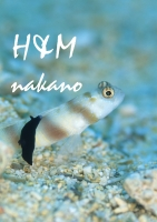 hmnakano2018may (7)