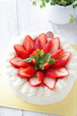 ショートケーキ4・240002