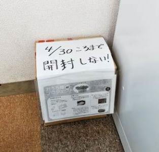おうち畑 カイワレ03