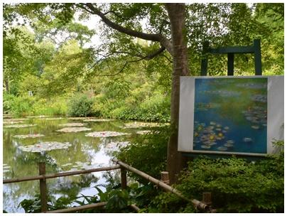 PaPaモネの庭11