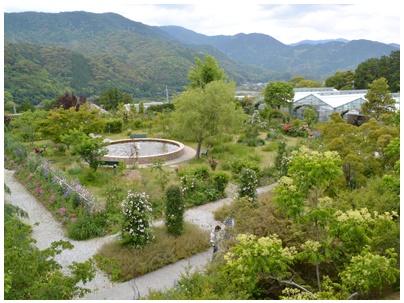 PaPaモネの庭14