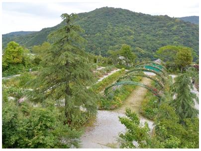 PaPaモネの庭15