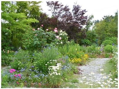 PaPaモネの庭18