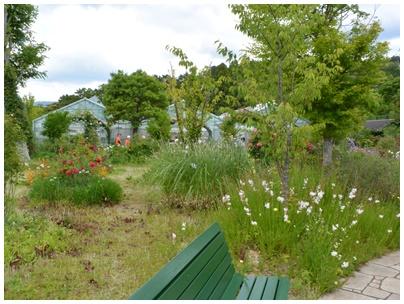 PaPaモネの庭21