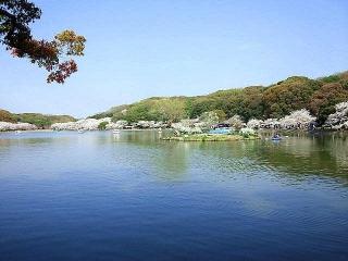 CAI_180402_5105 公園内の池の風景_VGA