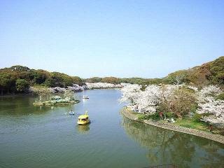 CAI_180402_5107 公園内屋上庭園からの池を望む_VGA