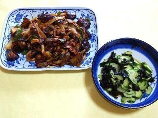 CAI_180426_5121 茄子の肉味噌炒め・胡瓜とワカメの酢の物_VGA