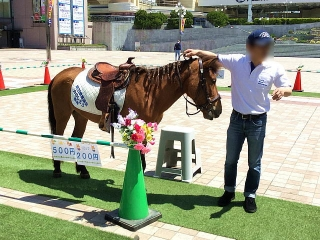 IMG_180429_1711 出先駅前広場での乗馬イベント_VGA