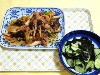 CAI_180528_5151 豚肉と白ネギ・茄子のオイスターと豆板醤のピリ辛味噌炒め・胡瓜とワカメの酢の物_VGA