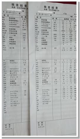 0410-16.jpg