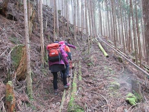 6 登山道