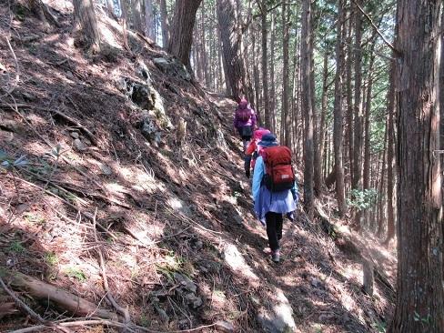 9 登山道