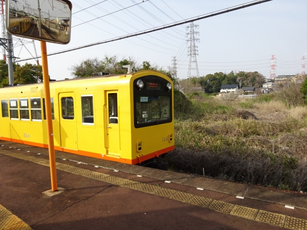 DSC01633.jpg