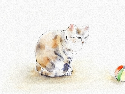 猫と紙風船