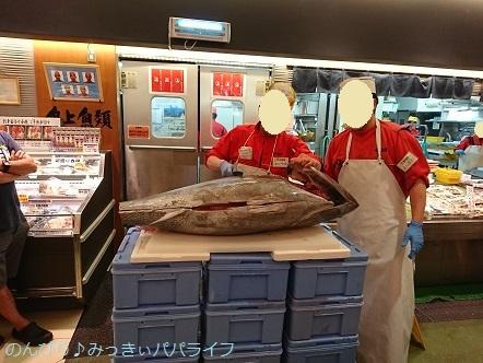 maguro03.jpg