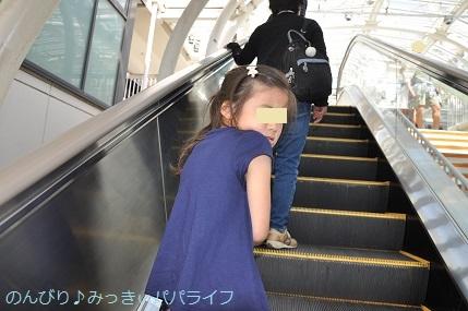 tateyama201805001.jpg