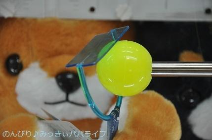 tateyama201805007.jpg