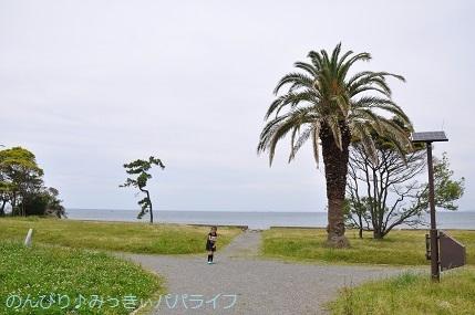 tateyama201805021.jpg