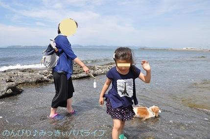 tateyama201805043.jpg
