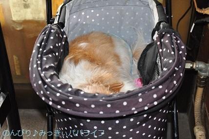 yakitori20180504.jpg