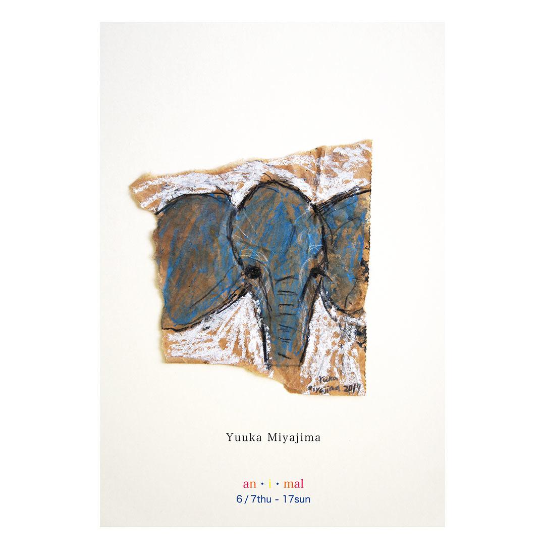 宮嶋結香 Elephant