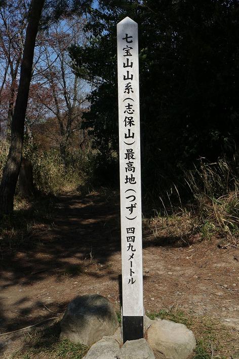 七宝山系 志保山つず449m 30 4 8