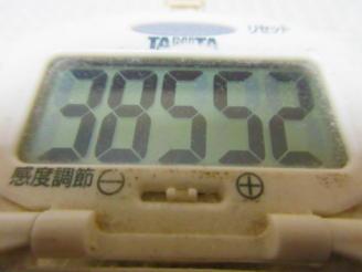 291歩数計(1)