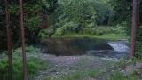 20150816水神さん池の平10