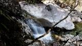 20170430田立の滝179L