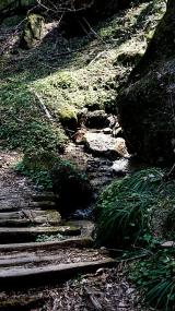 20170430田立の滝188L