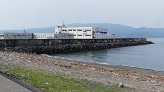 20180526沼津港029