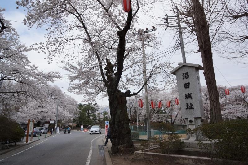 2沼田城 (1200x800)