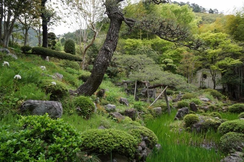 4庭園 (1200x800)