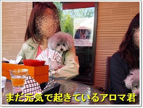 20180408_053.jpg