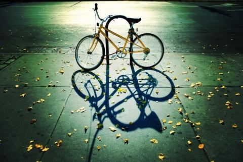 本音と建前 自転車 影