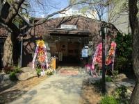 春の仁寺洞