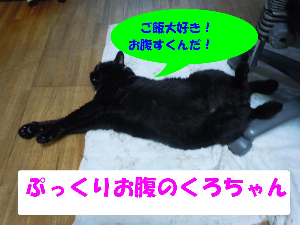 くろダイエット1
