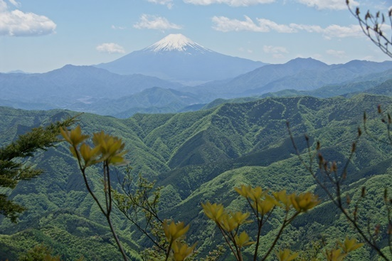 20180504-28 三頭山より富士山