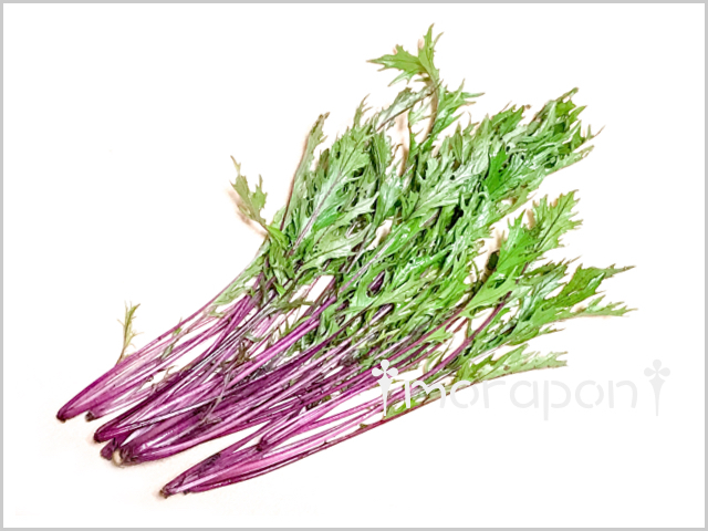 180526 赤水菜-1