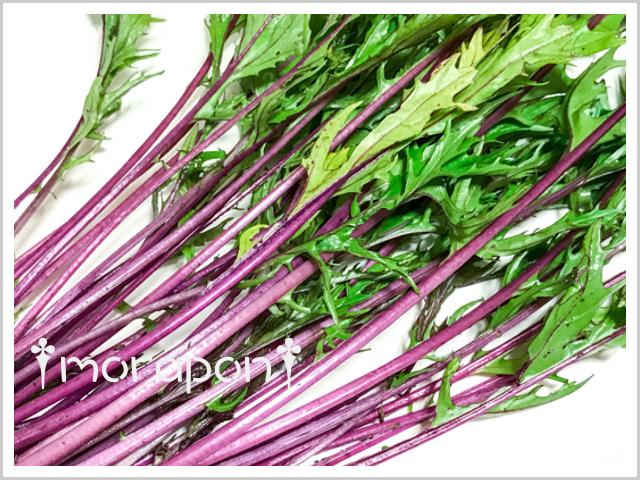 180526 赤水菜-2