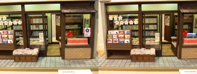 kinoe-ne ドールハウス 稲荷堂書店③(交差法)