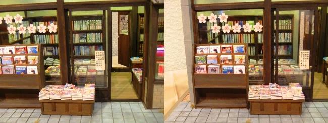 kinoe-ne ドールハウス 稲荷堂書店④(交差法)